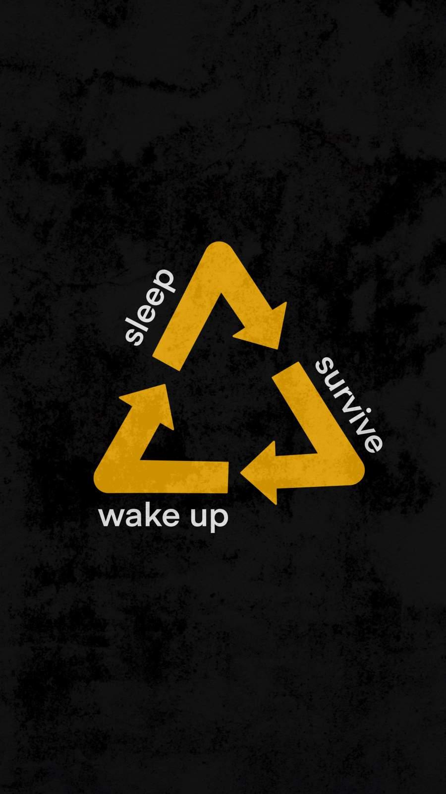 Wake up Sleep Survive
