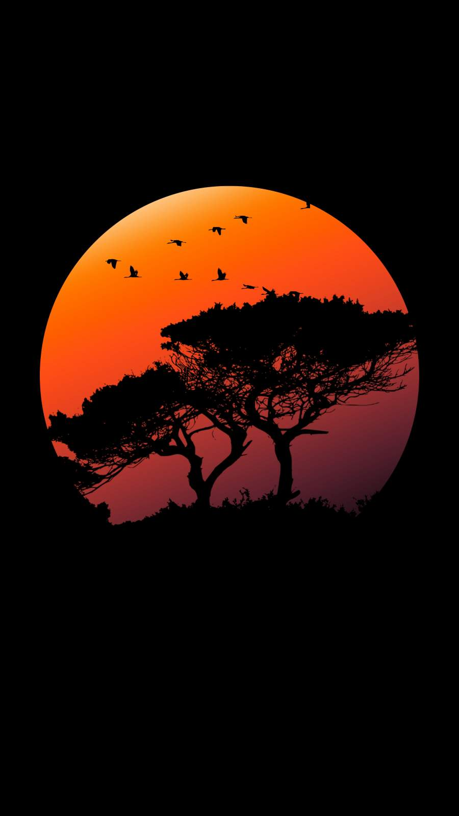 Amoled Tree iPhone Wallpaper