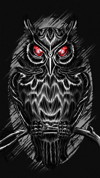 Black Owl iPhone Wallpaper
