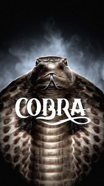 Cobra Snake iPhone Wallpaper