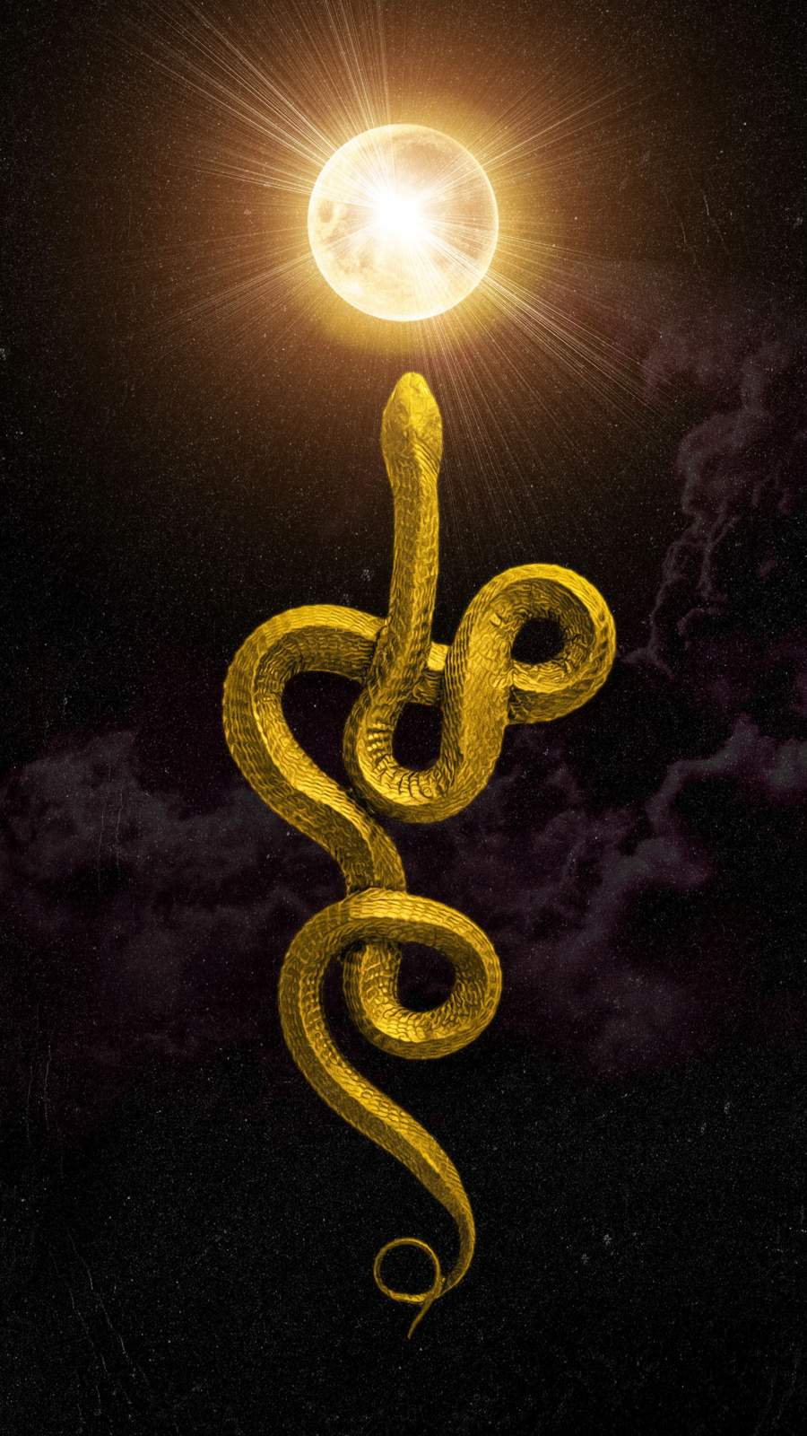 Golden Snake iPhone Wallpaper