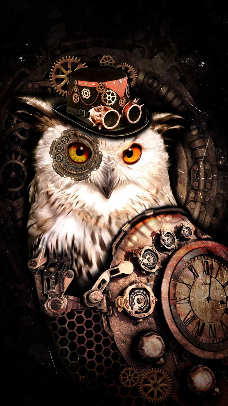 Hat Owl iPhone Wallpaper