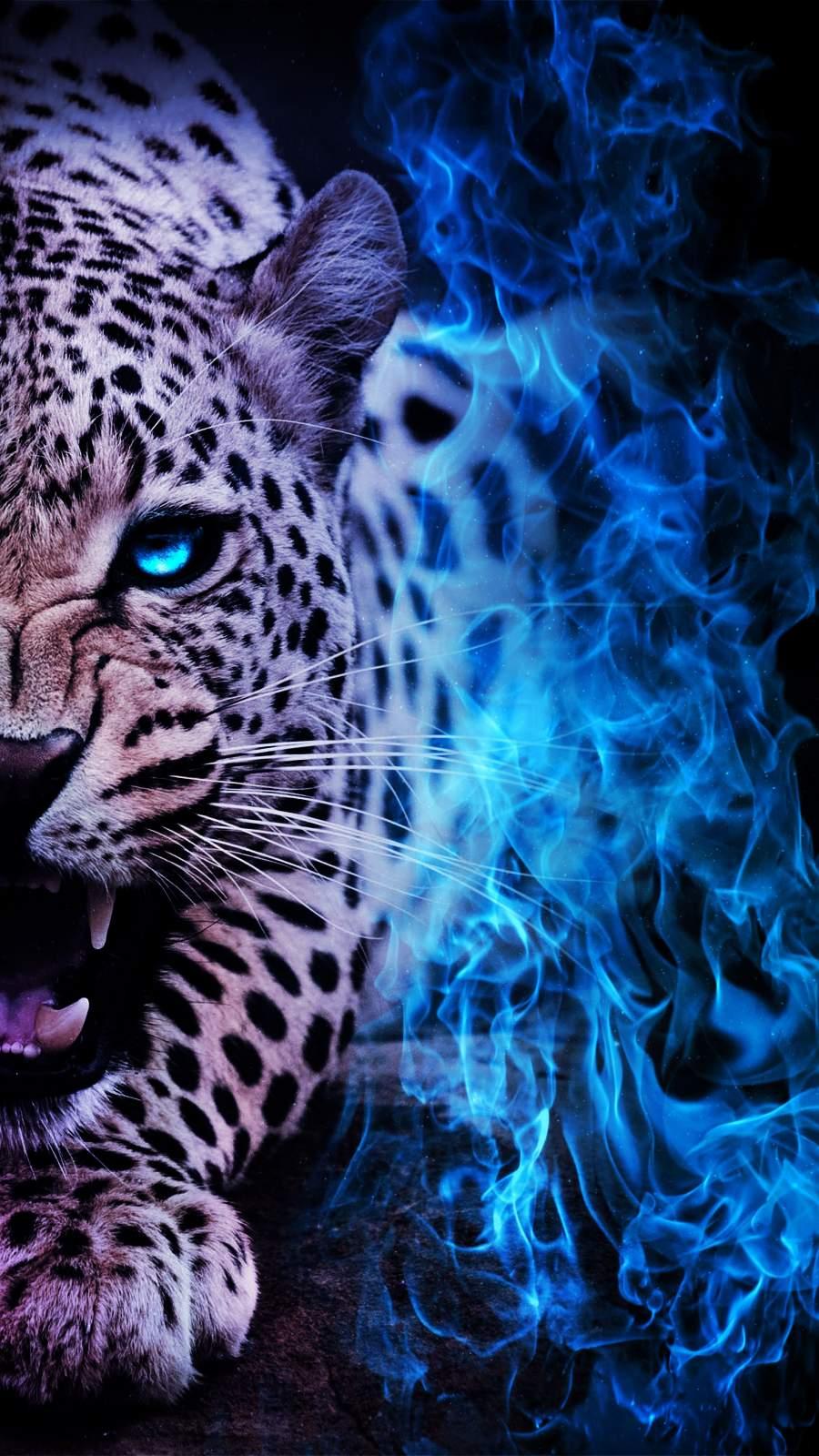 Jaguar Predator Animal