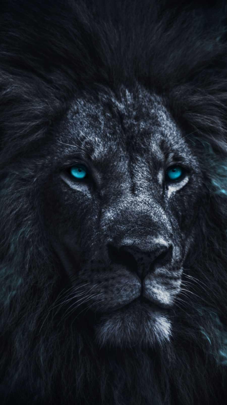King Lion Eyes iPhone Wallpaper