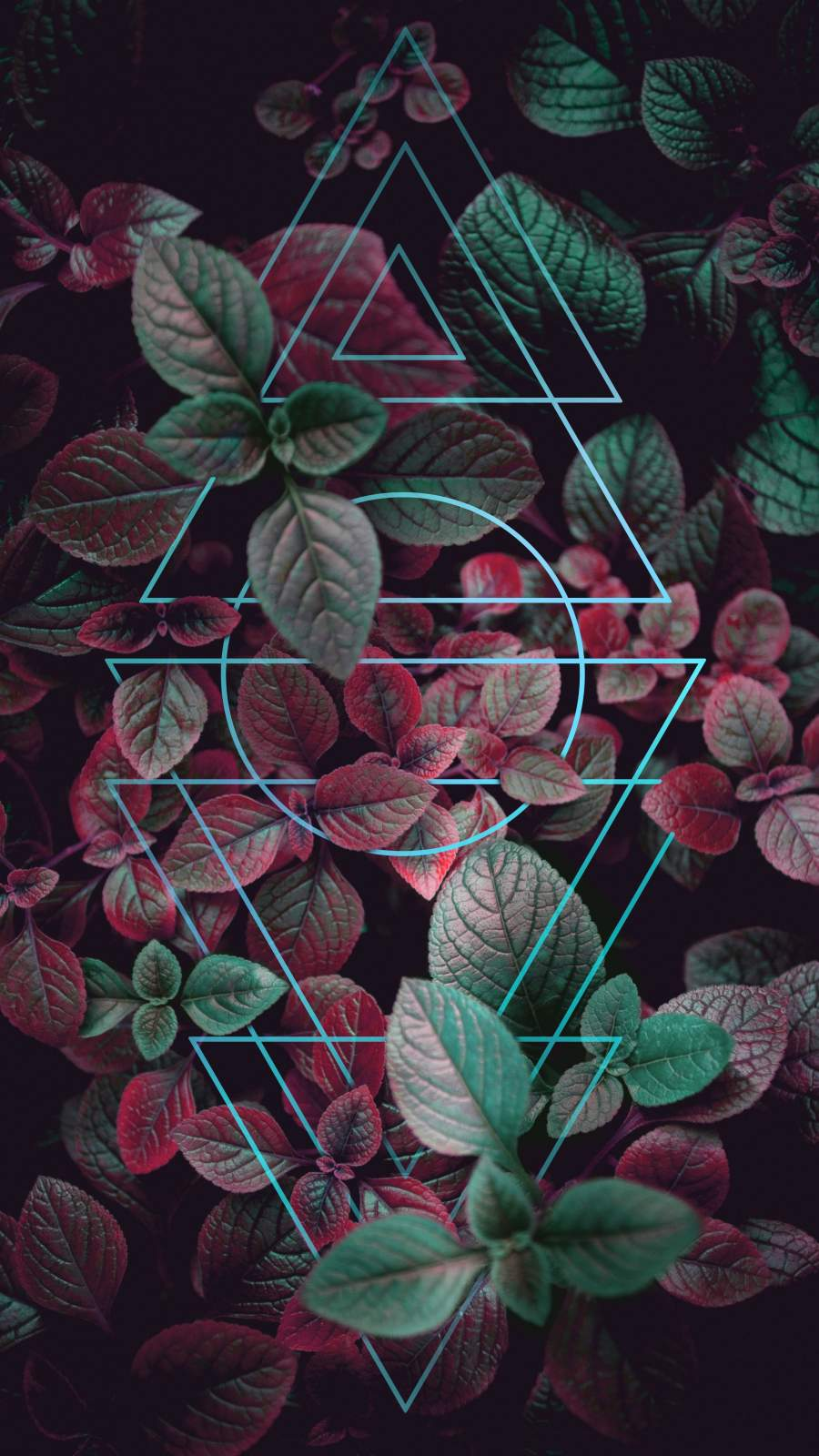 Nature Art Neon Triangles