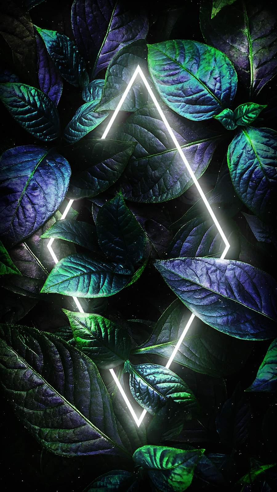 Neon Dark Foliage Nature