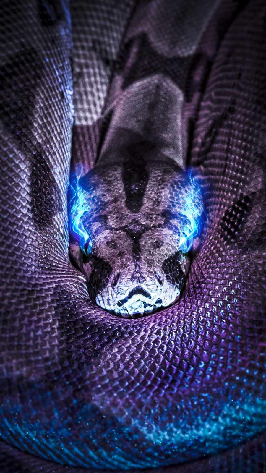 Neon Eye Python iPhone Wallpaper