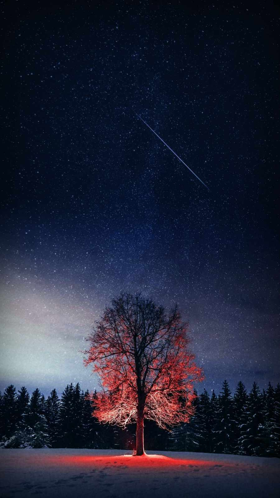 Night Tree Starry Sky