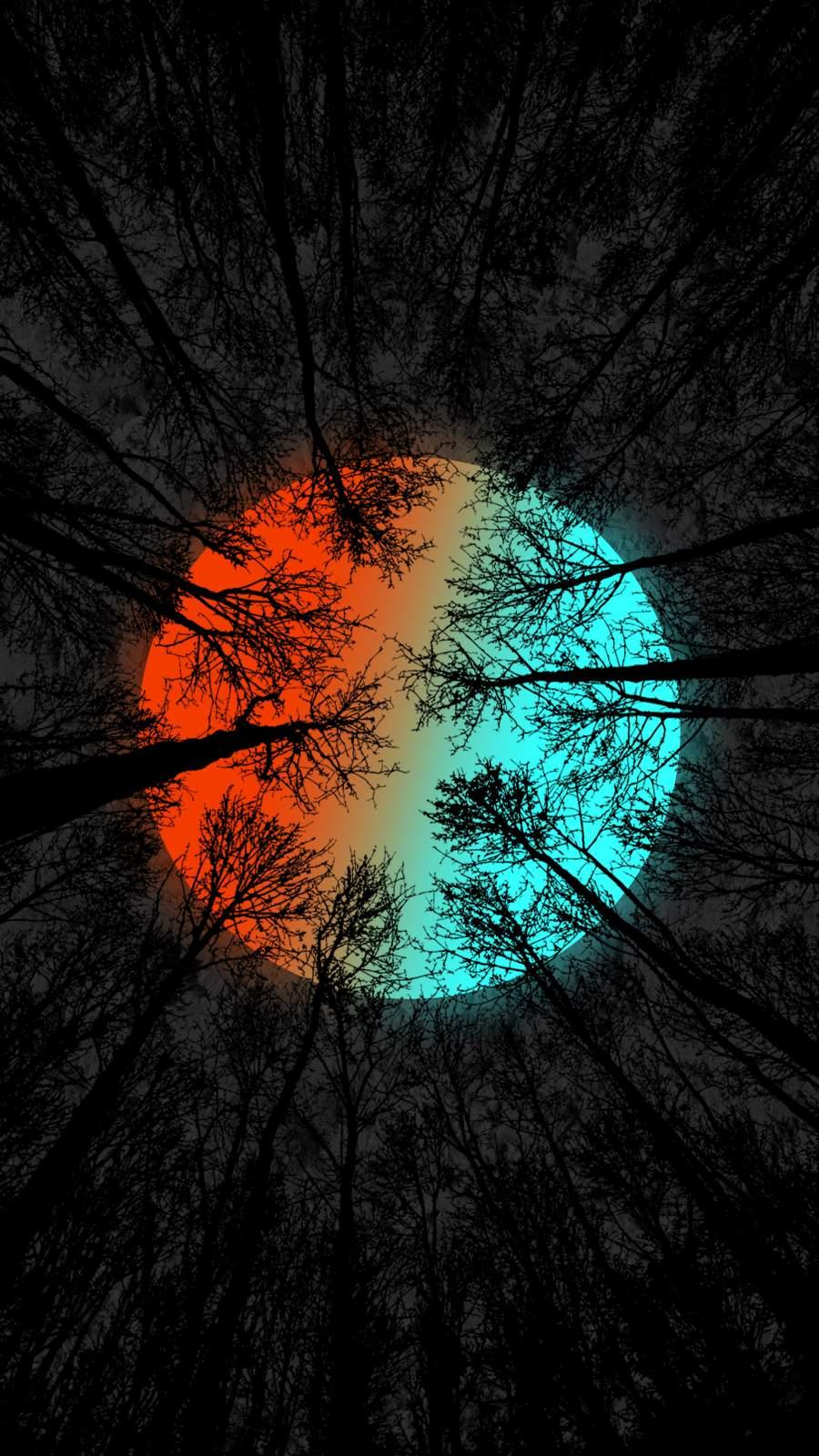 Rainbow Moon Forest