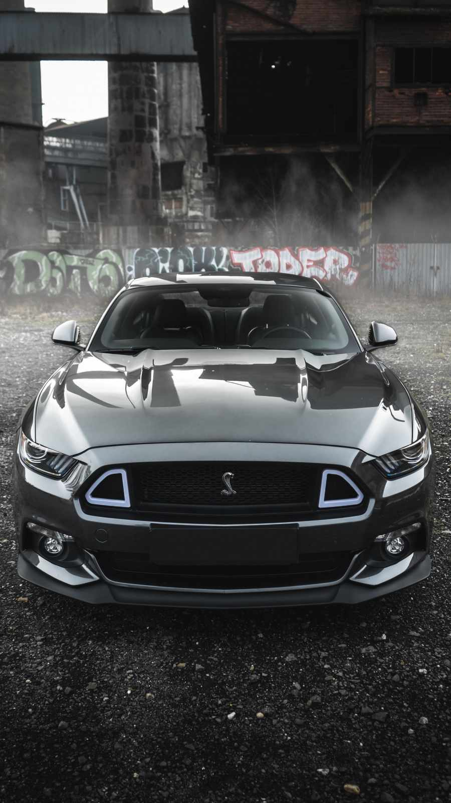 Ford Mustang Face Grey