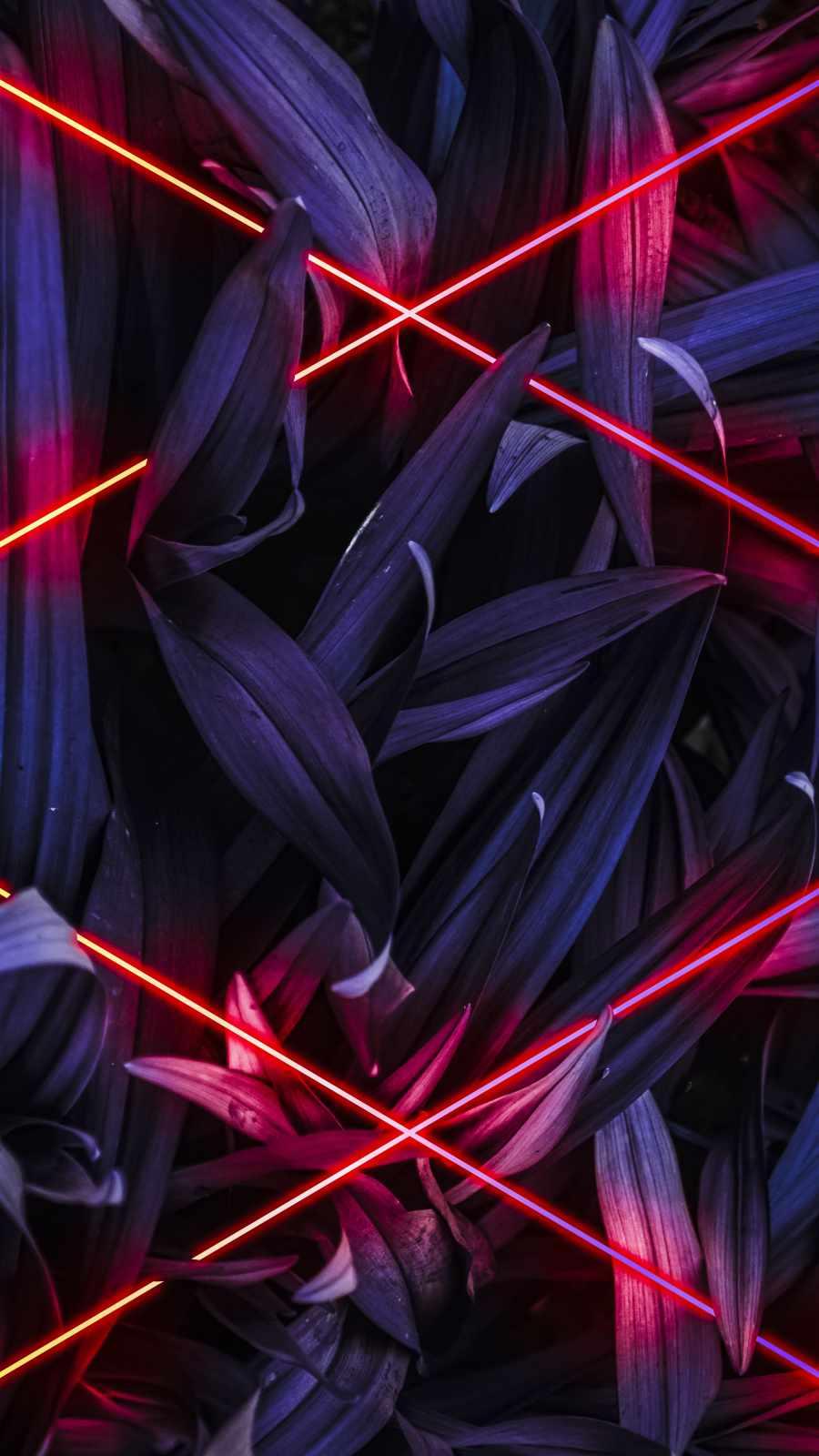 Neon Cross Nature