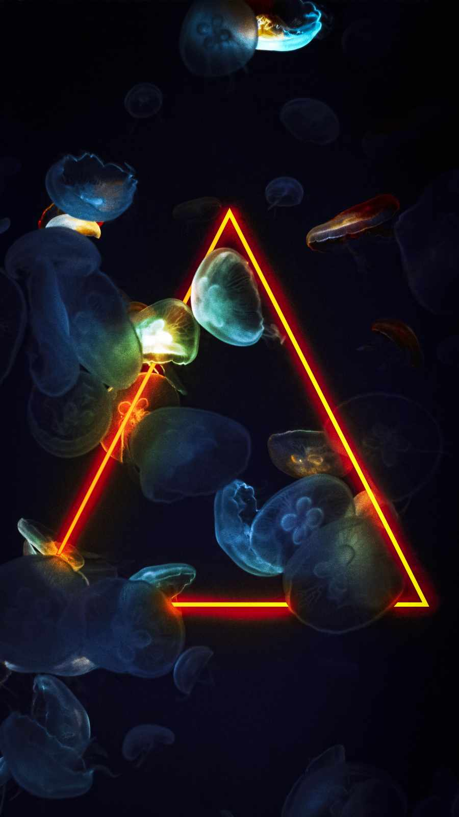 Neon Triangle Jellyfish