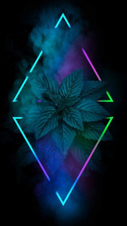 Rhombus Neon Nature