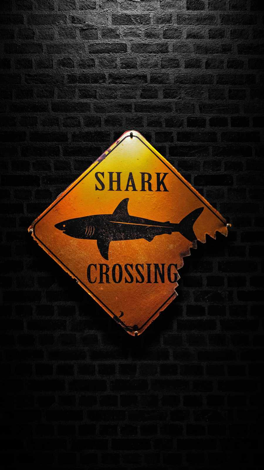 Shark Crossing iPhone Wallpaper