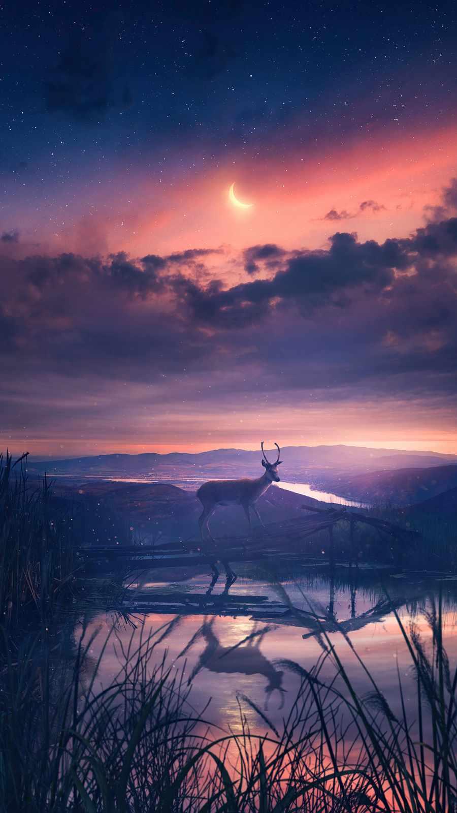 Twilight Deer 4K iPhone Wallpaper