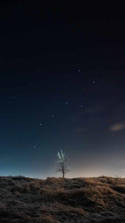 Minimal Night Sky Tree