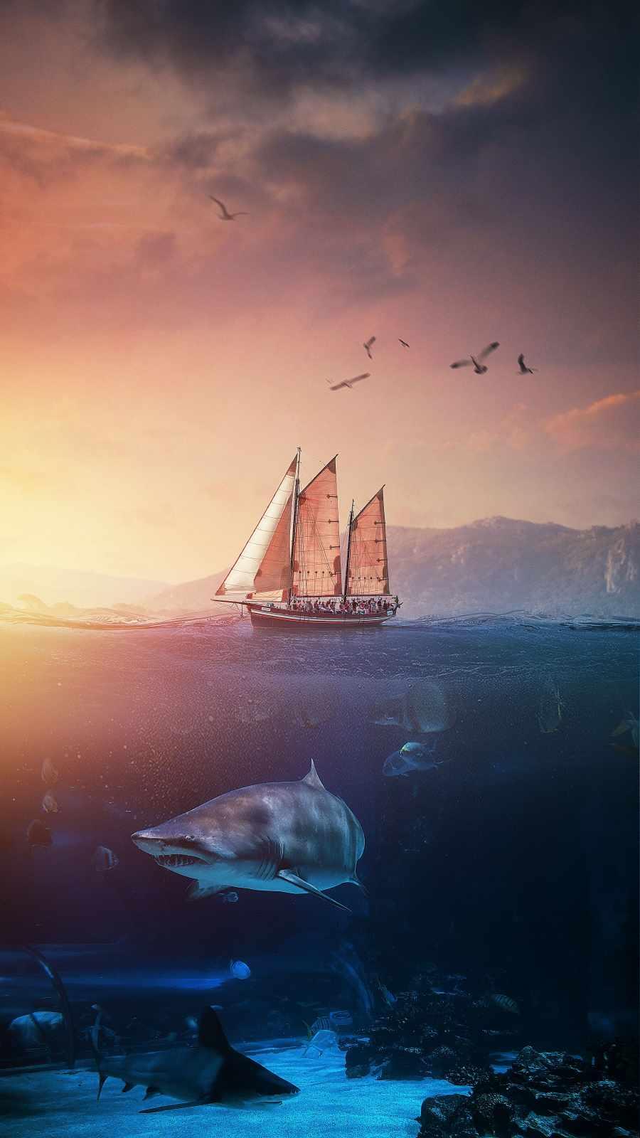Shark World iPhone Wallpaper