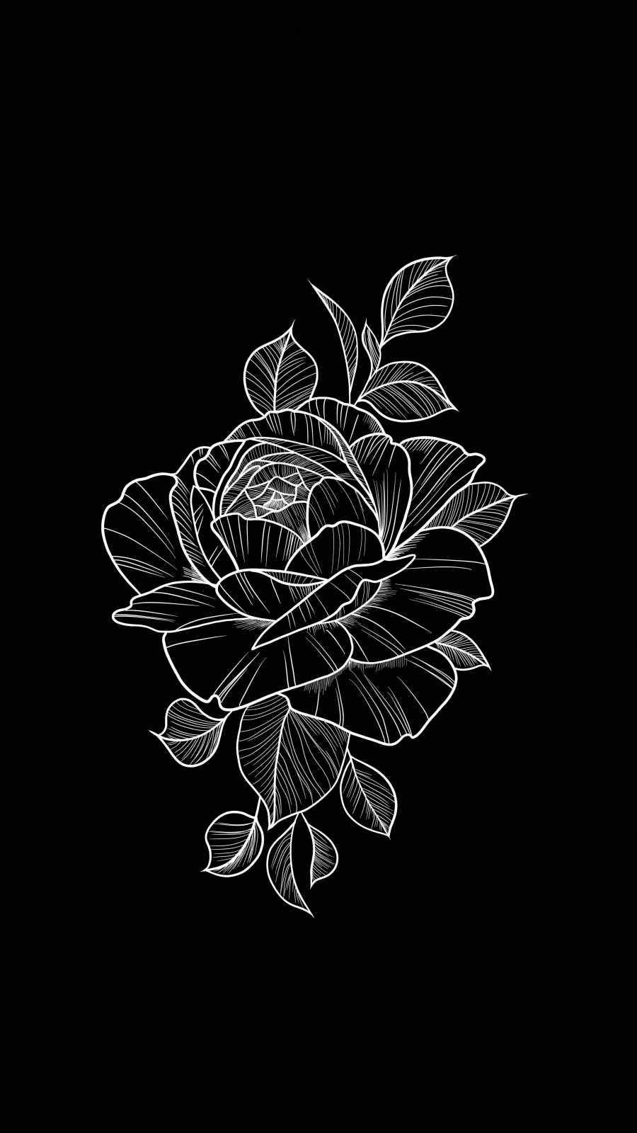 Black Rose Amoled