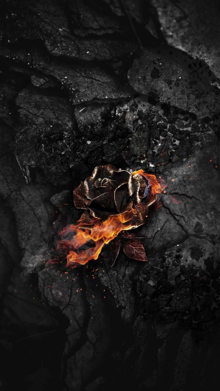 Burning Rose Ash