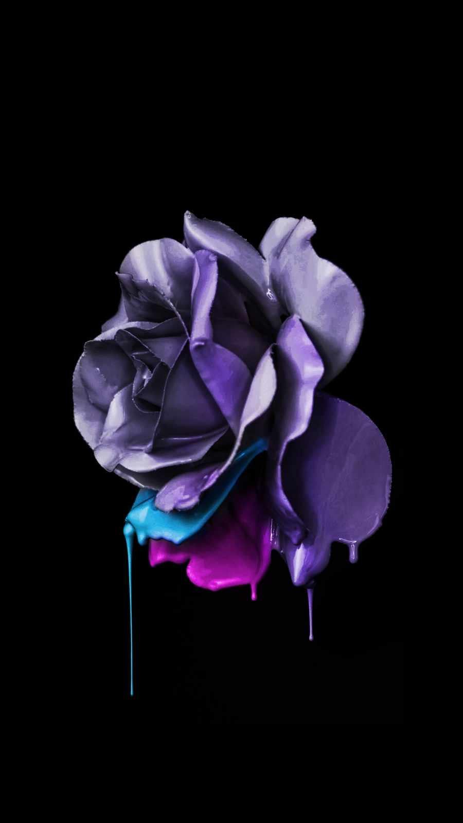 Dark Rose iPhone Wallpaper