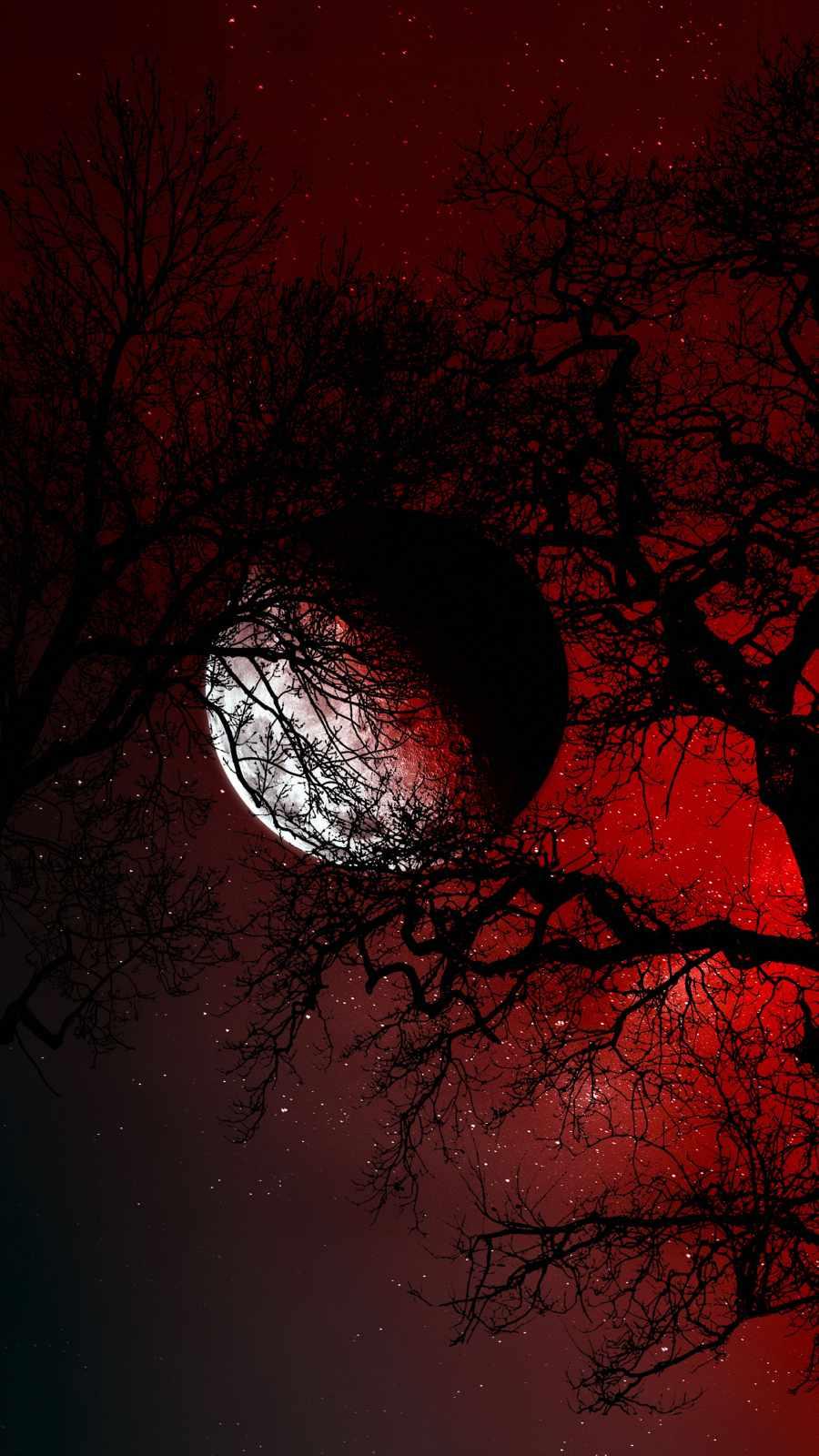 Moon Hiding in Tree