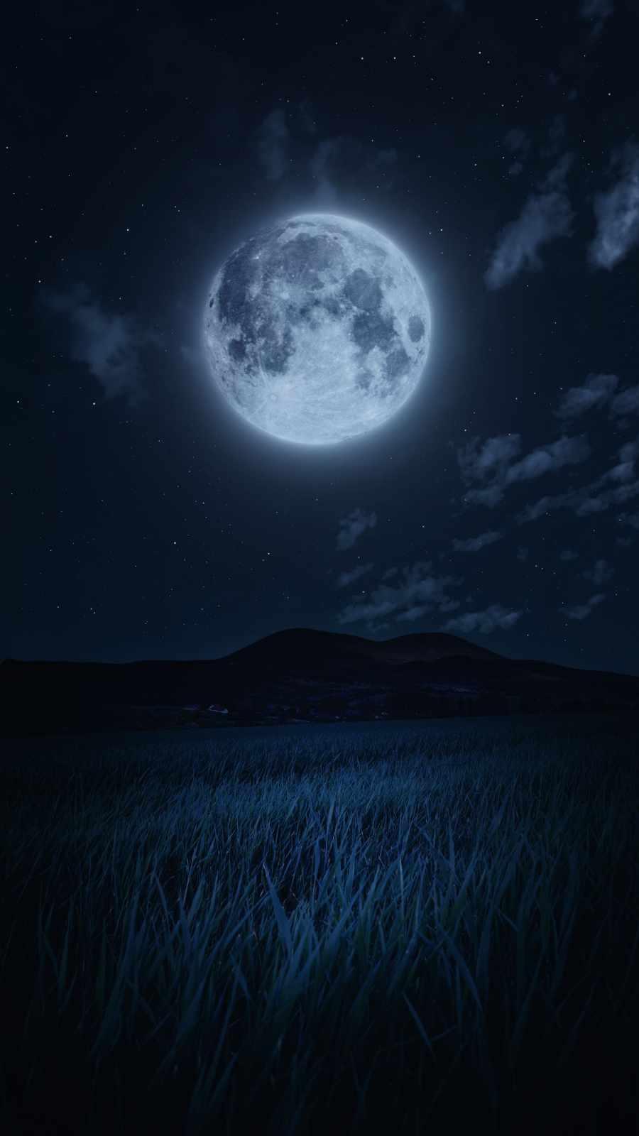 Moonlight in Nature