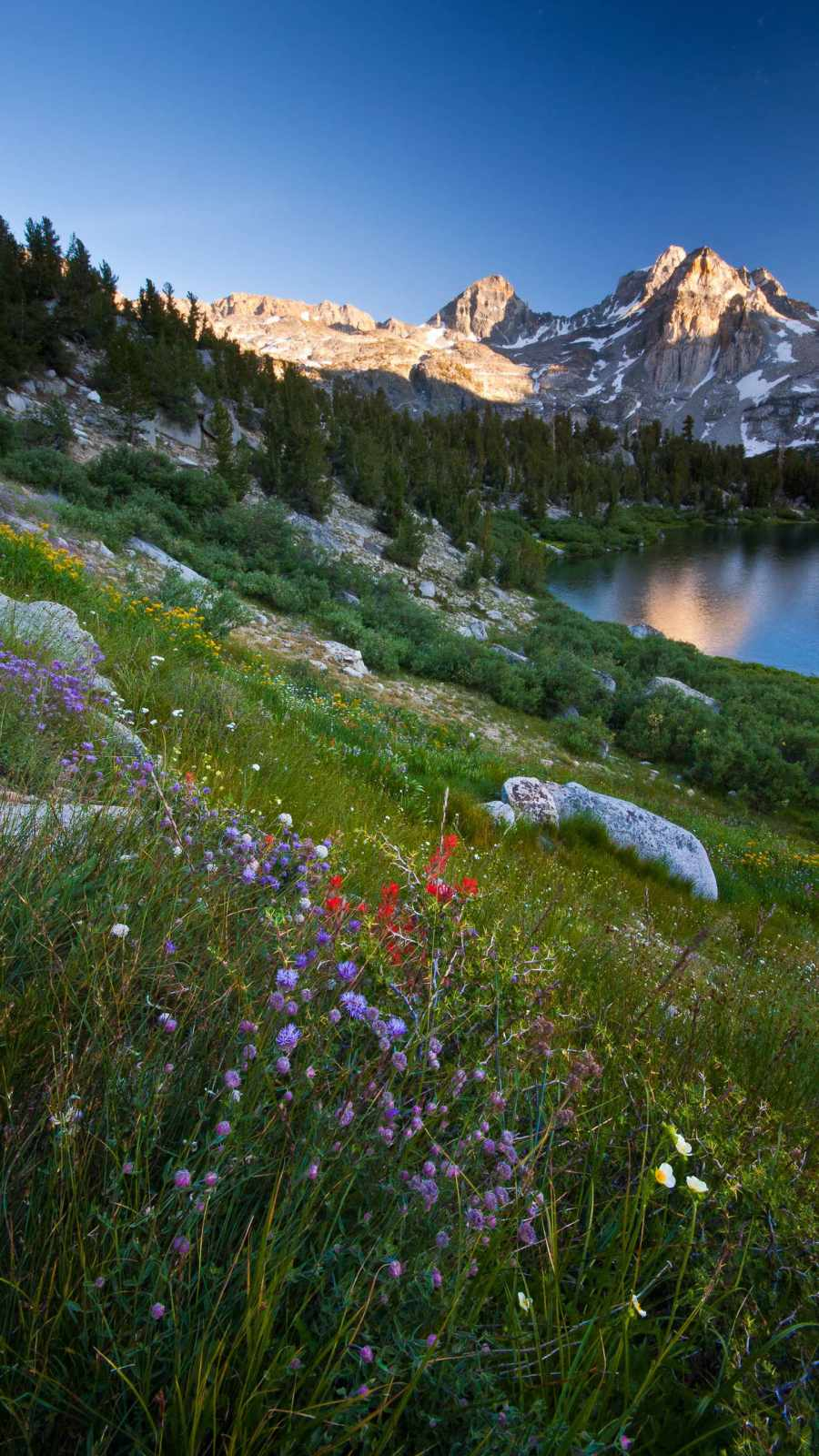 Mountain Scenery iPhone Wallpaper