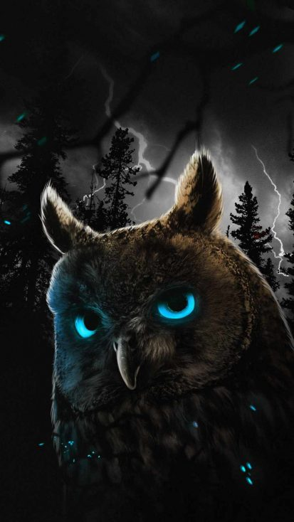Mystic Owl iPhone Wallpaper