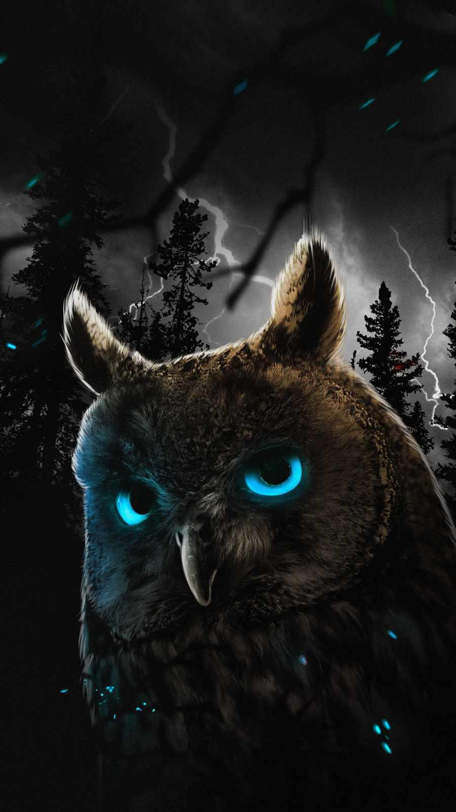 Mystic Owl iPhone Wallpaper