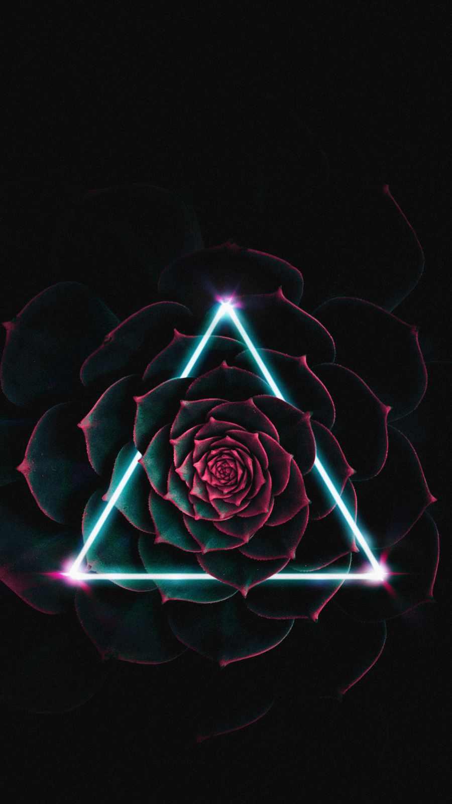 Neon Triangle Flower iPhone Wallpaper