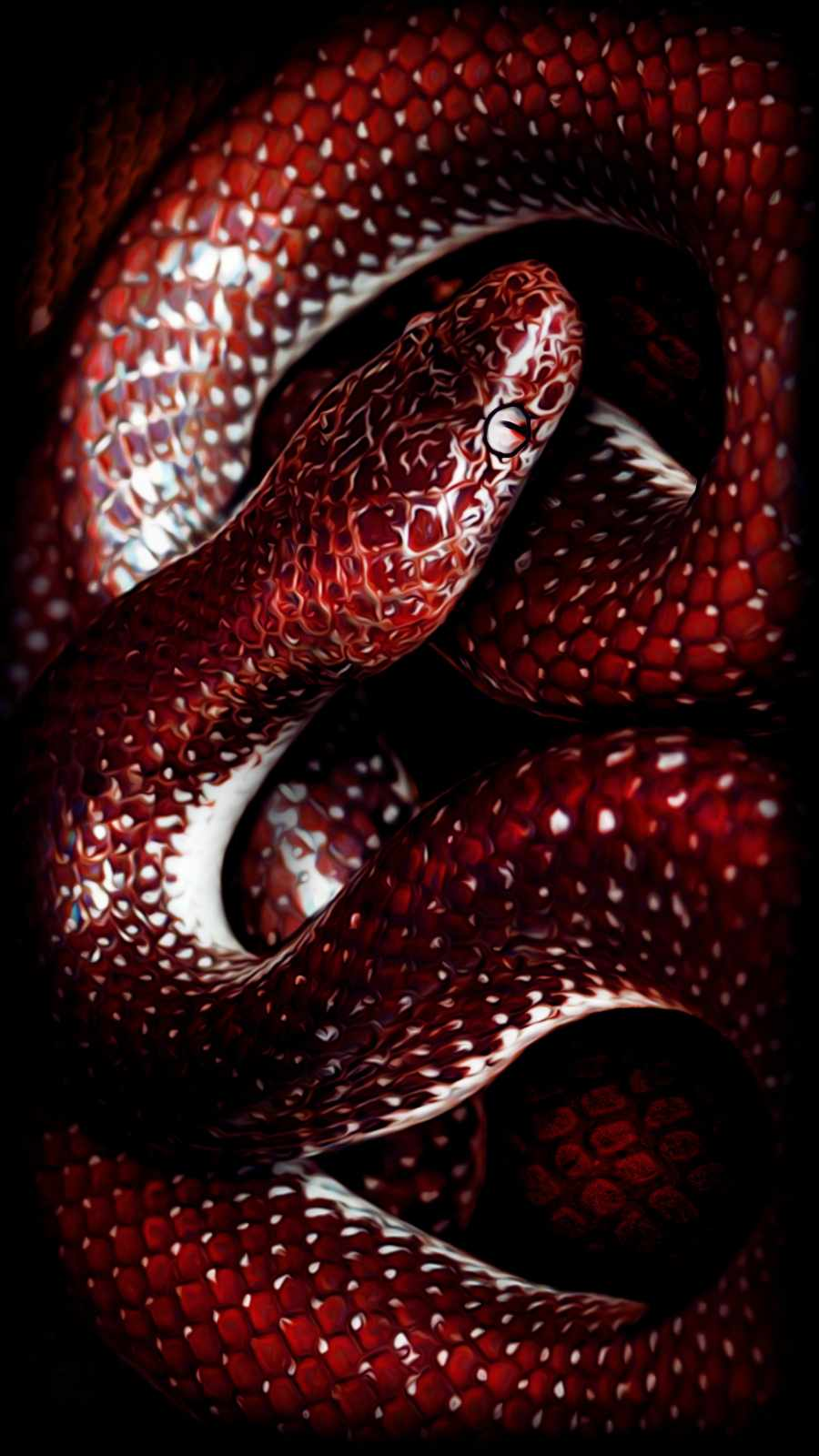 Red Snake iPhone Wallpaper