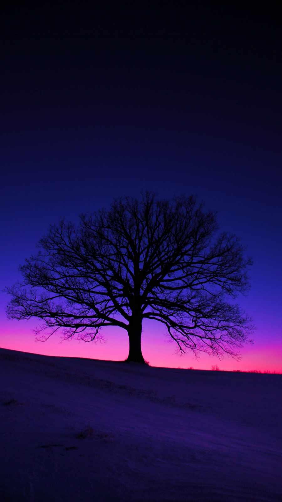 Silhouette Tree iPhone Wallpaper