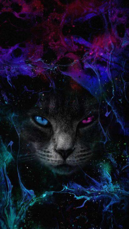 Blacl Cat Art iPhone Wallpaper