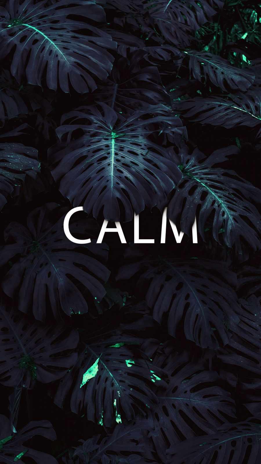Calm Nature iPhone Wallpaper