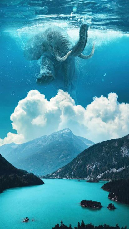 Elephant Under Water Manipulation