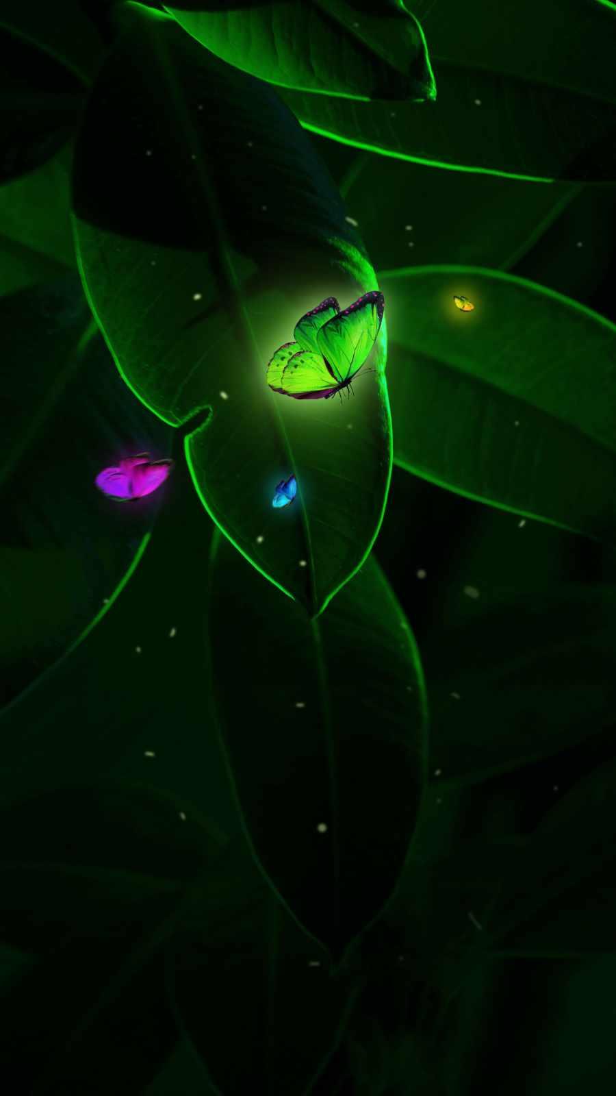 Glowing Butterflies Nature