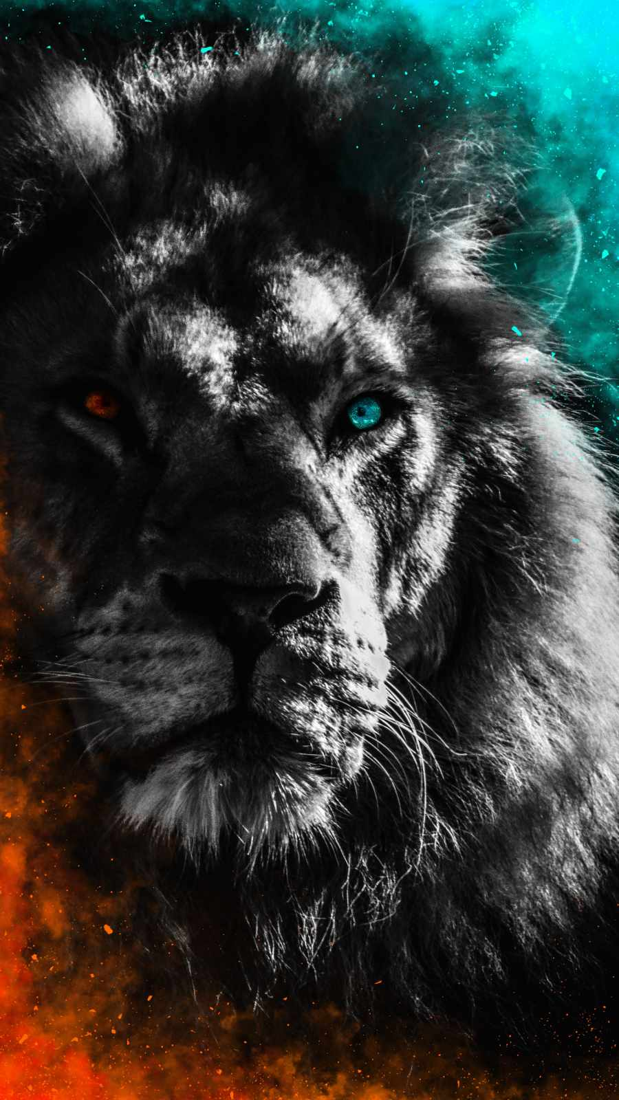 Lion Heterochromia iPhone Wallpaper