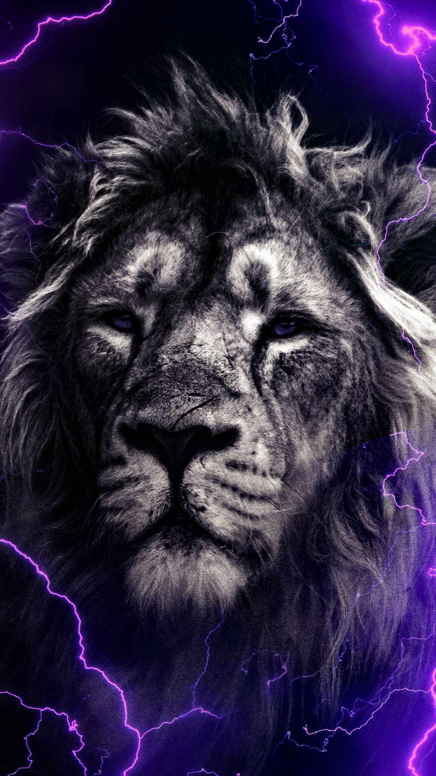 Lion Thunder iPhone Wallpaper