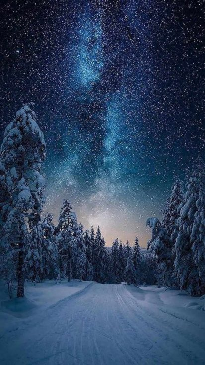 Northern Lights Starry Sky Snow Night