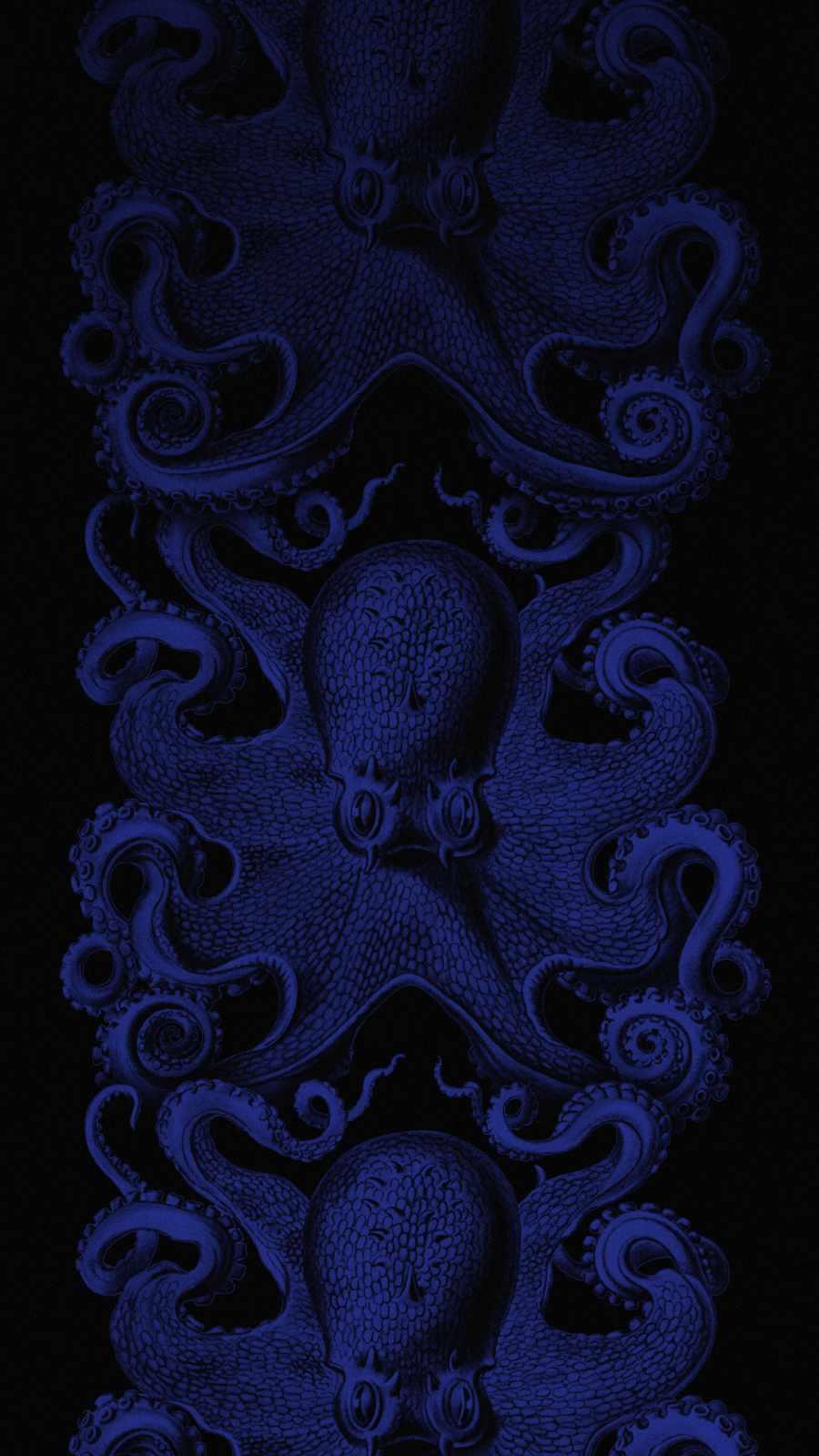 Octopus iPhone Wallpaper