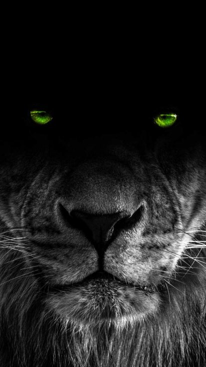 Predator Eye iPhone Wallpaper