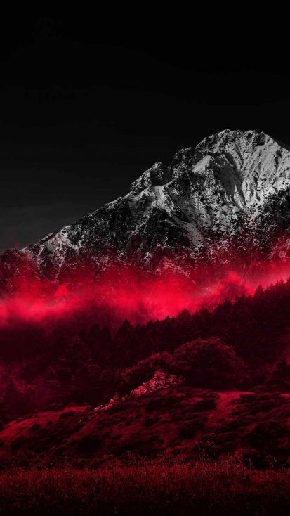 Red Forest Snow Mountain
