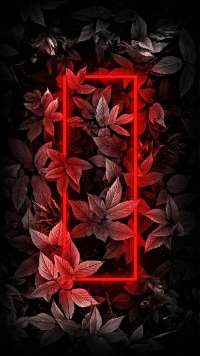 Red Neon Foliage Nature