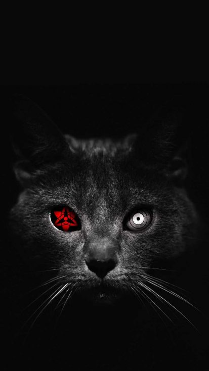 Atomic Cat iPhone Wallpaper