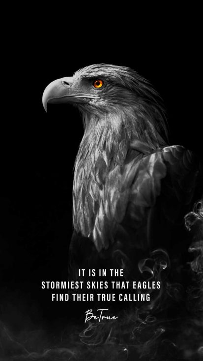 Eagle Quote iPhone Wallpaper