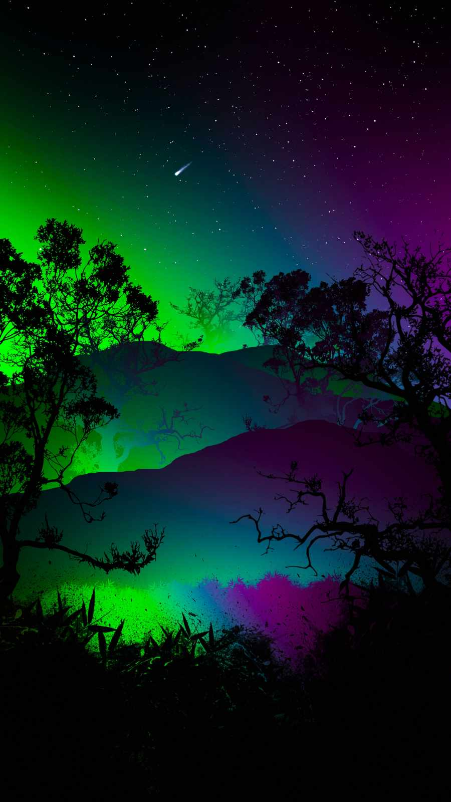 Night Forest Lights