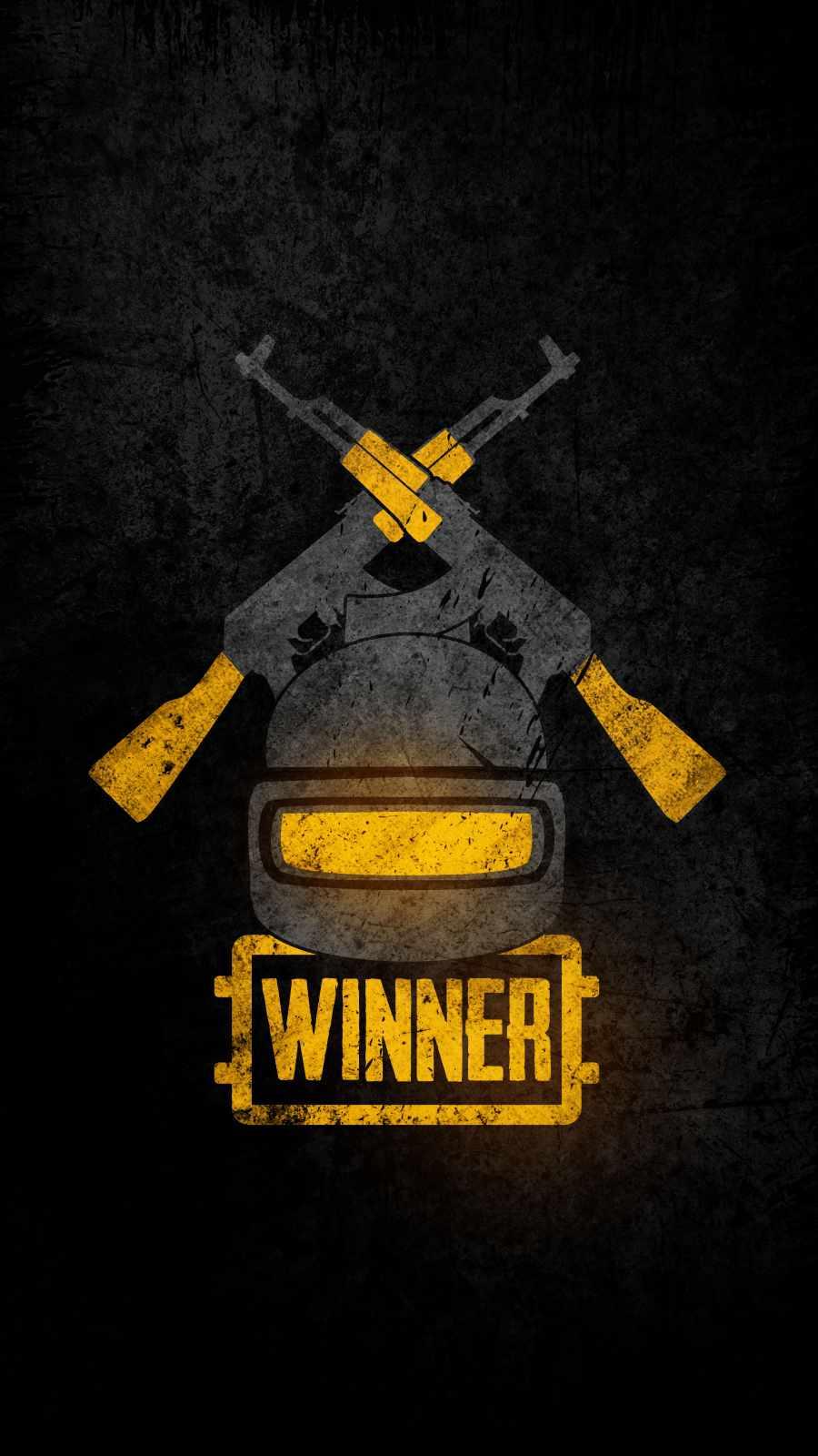 PUBG Battelgrounds Winner