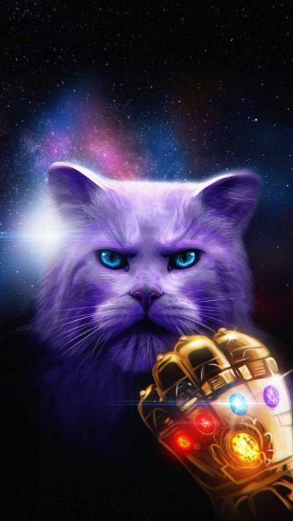 Thanos Cat iPhone Wallpaper