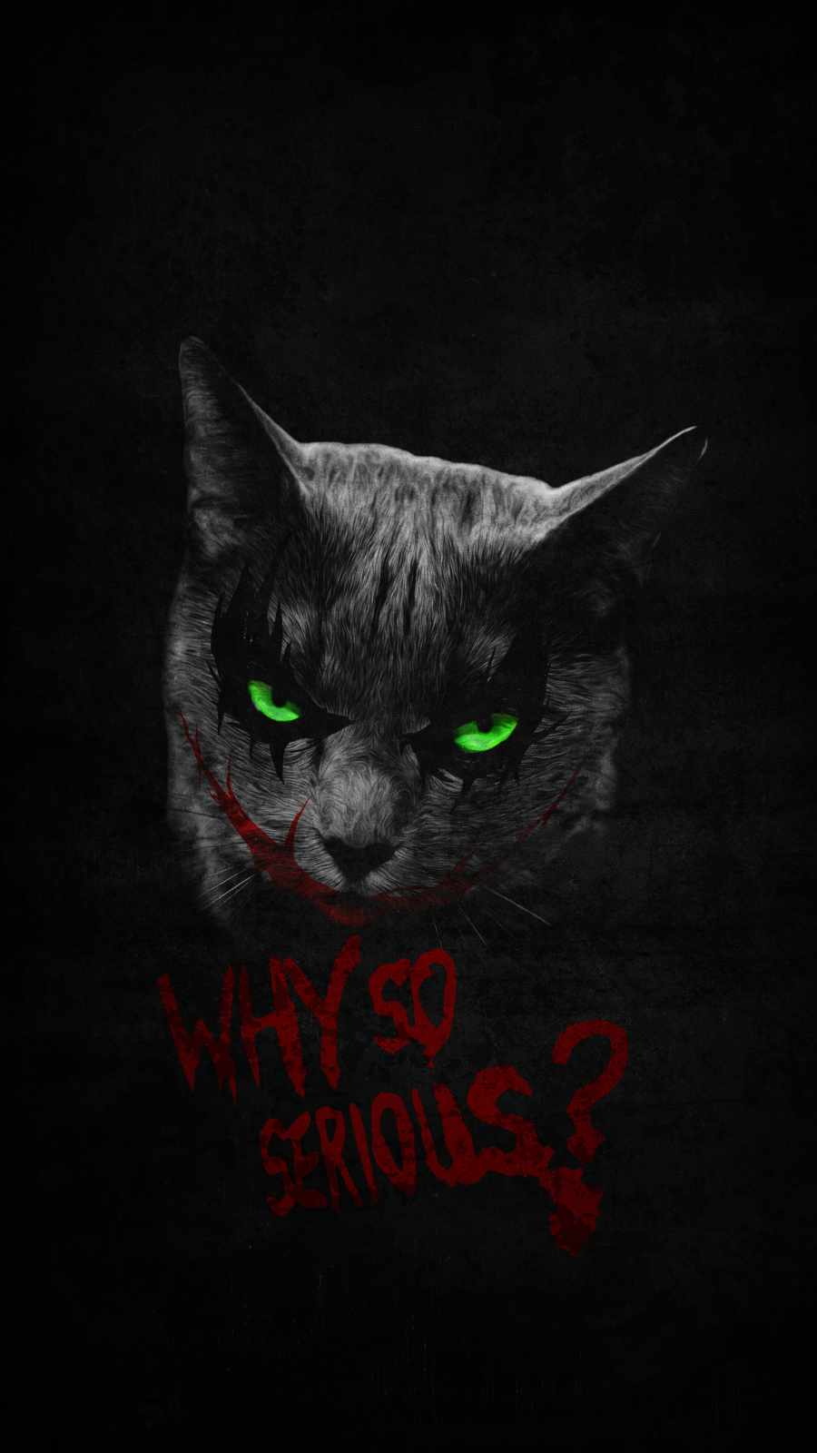 Why So Serius Cat