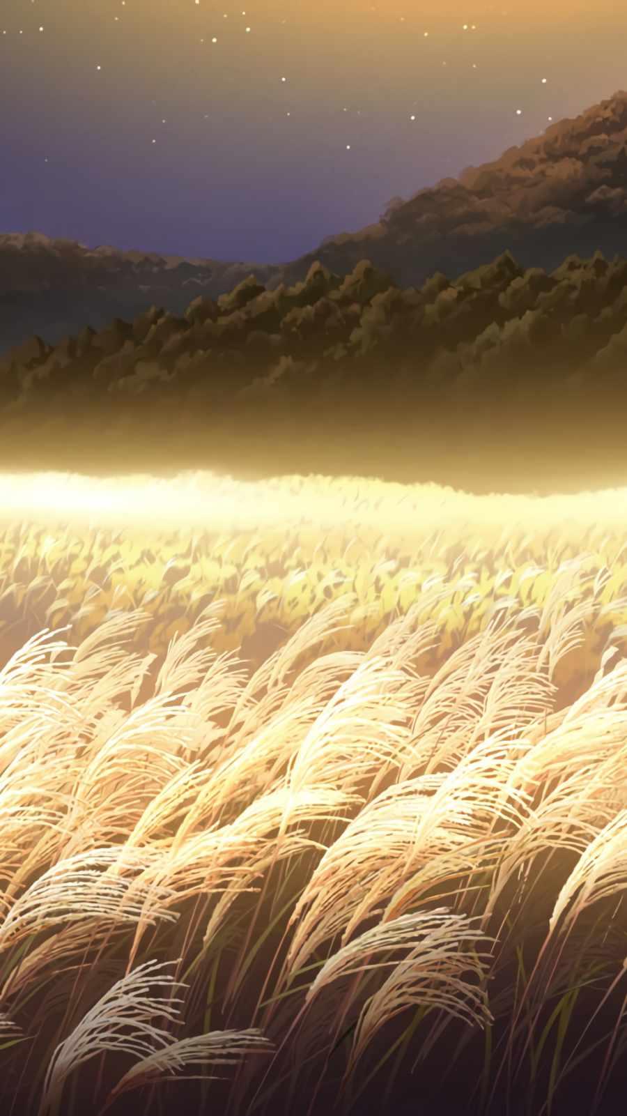Wheat Farm iPhone Wallpaper